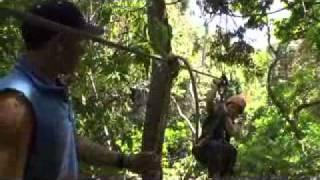 Tauck Culturious - Costa Rica