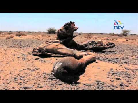 Kenya Red Cross Society says the drought is still far from over