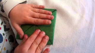 Origami Cootie Catcher