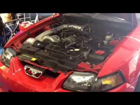Mustang 2v 408 whp 398 pound of torque