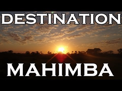 Hunting in Mozambique - Epic adventure to Mahimba