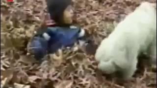 Auch Tiere können richtige Arschlöcher sein