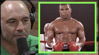 Joe Rogan on Mike Tyson's Legacy