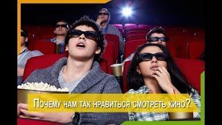 Почему мы любим смотреть фильмы?...
