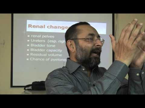 Physiology - Physiological changes during pregnancy - part 3