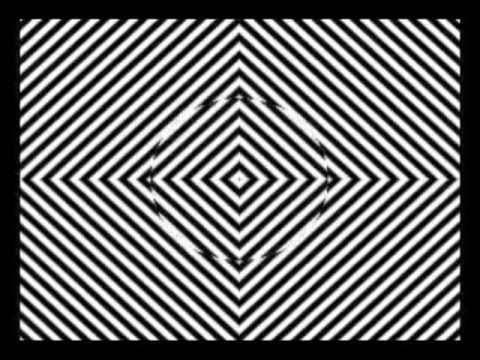 Stare In The Middle For 30 Seconds Then Look At Your Hand [GREAT VINES]