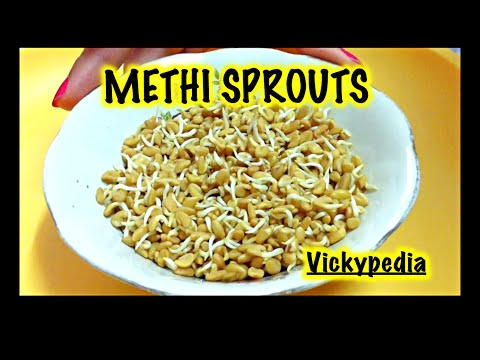Methi Sprouts / Fenugreek Sprouts / Quick Weight Loss with Sprouts / Health Benefits of Methi
