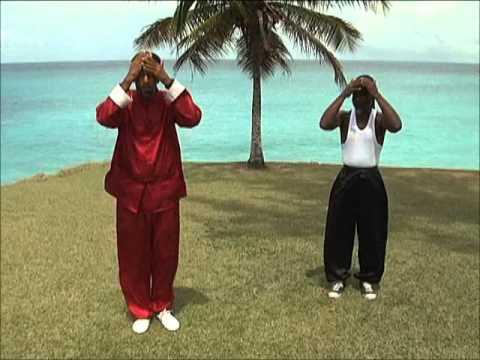 Barbados Tai Chi  - 5 animal frolics medical qigong health exercise- MONKEY intro