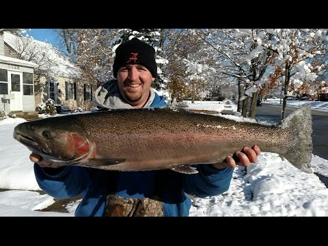 Steelhead - St. Joe River - Winter Wonderland
