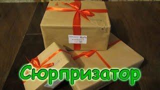 Семья Бровченко. Мы получили 3 посылки от Сюрпризатор!!! Взрослый киндер-сюрприз. (12.16г.)