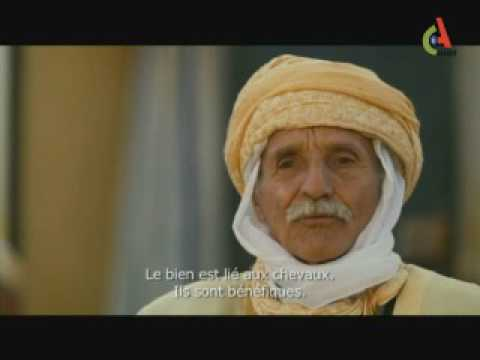 Emir Abdelkader El Djazairi