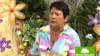 Урок 8 - Цветники и клумбы - Сад и Ландшафтный дизайн(У Вас уже есть шикарный цветник! Как ухаживать за цветами, как обрезать, как удобрить и как сделать эффектив..., 2012-12-24T16:10:47.000Z)