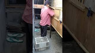 Kandang merpati pos mengelo panen