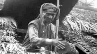 The Medicine Men of Old Borneo