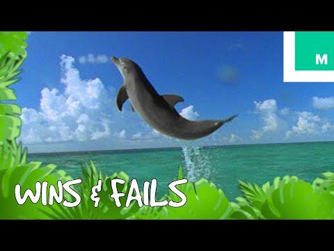 fishing dating puns
