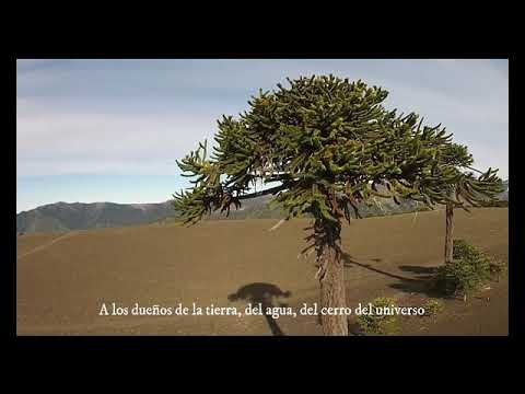 SALUDO DEL CHACHAY CARLOS HUENCHU