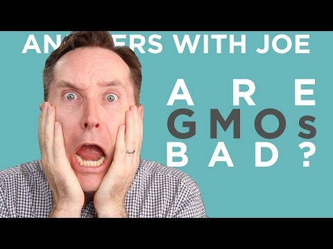 OMG GMOs! The Truth About Genetically Modified Food | Answers With Joe