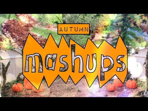 Mash Ups: How to Make |  Doll Pumpkin Patch | Pumplin Skirt | Pumpkin Pie & More