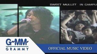 เพลงของคนโง่ - Sweet Mullet【OFFICIAL MV】