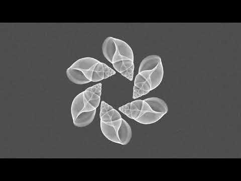 Kbober, Sylter - Public Culture (Original Mix)