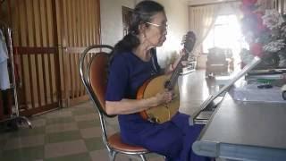 Người Tình Mùa Đông (Nhạc Nhật )Mandolin By Việt Dung