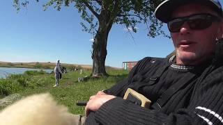 Майская рыбалка на платнике в Беларуси. Кареличи. Карп, карась на все снасти.