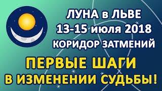 ЛУНА в знаке ЛЕВ с 13 по 15 июля 2018, КОРИДОР ЗАТМЕНИЙ. Первые шаги в изменении Судьбы!
