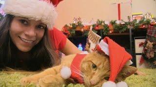 Mary Avina wishes You a Merry Christmas