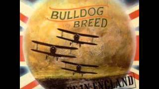 Bulldog Breed - 'Friday Hill' (1969)