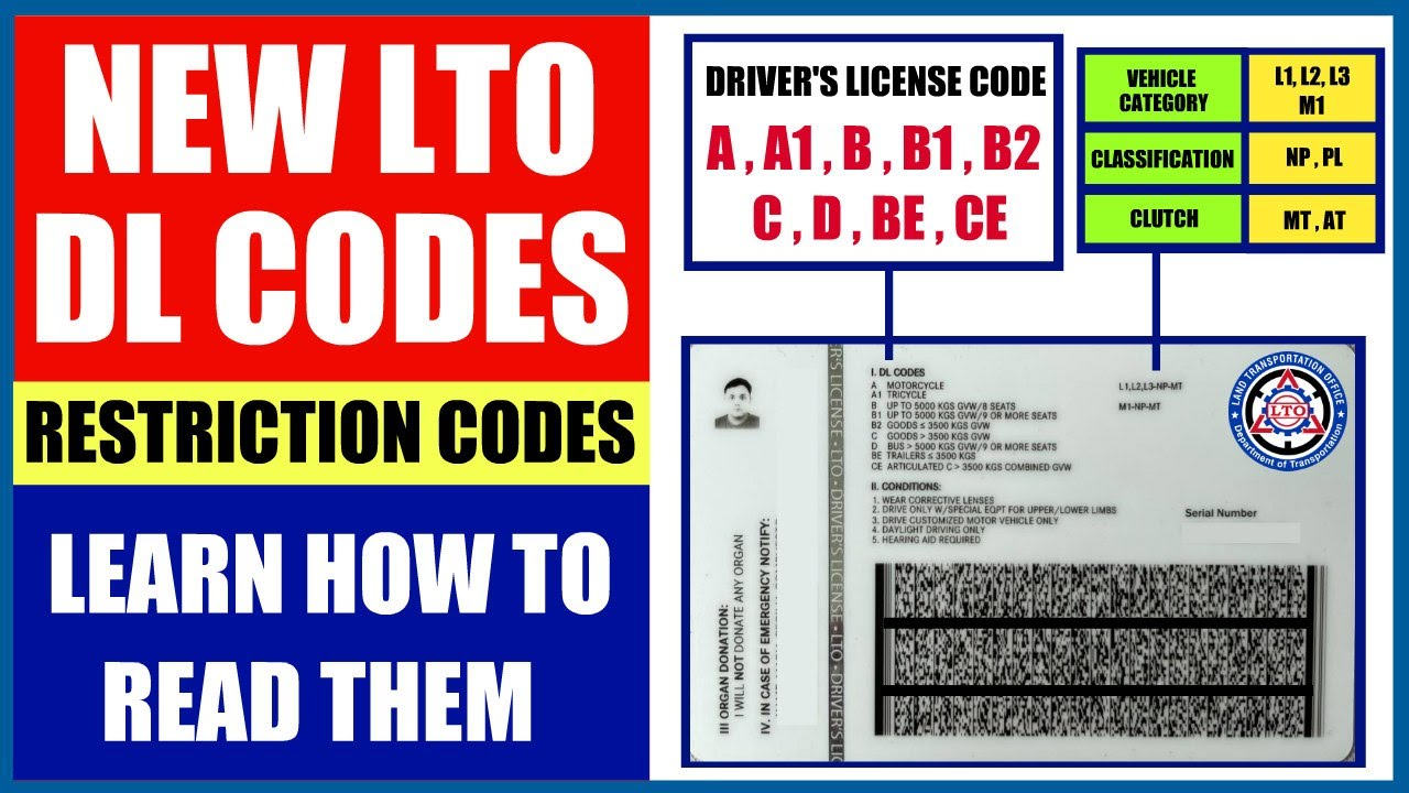 NEW LTO DL CODES | RESTRICTION CODES | LEARN HOW TO READ THEM!