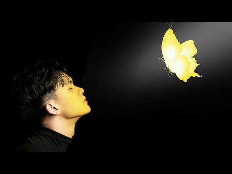 Picsart  Cách ghép con bướm phát sáng vào ảnh bằng picsart