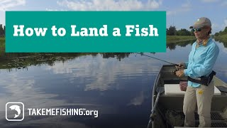 How to Land Fish