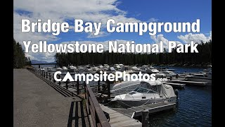 Bridge Bay Campground, Yellowstone National Park, Wyoming