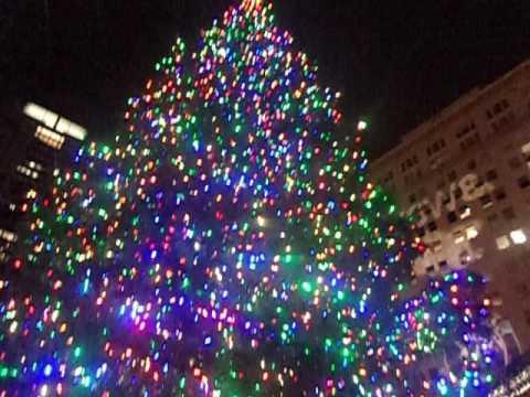 Portland, OR 2016 lighting up tree