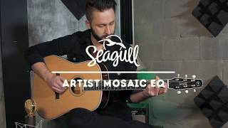 Vincent Vertefeuille Playing the Seagull Guitars Artist Mosaic EQ