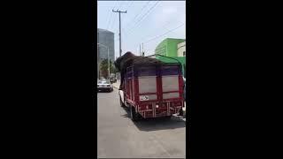 Taxi para toros. Ay avisen cuándo ocupen transporte ganaderos