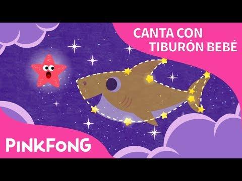 Brilla Tiburón Bebé   Canta con Tiburón Bebé   Animales   Pinkfong Canciones Infantiles