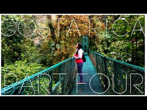CLOUD FOREST IN MONTEVERDE - COSTA RICA VLOG PART 4