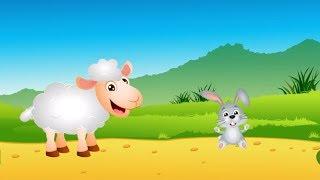 Bajka dla dzieci o zwierzętach