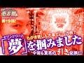 回胴リベンジャー遊太郎 vol.19