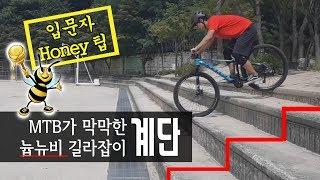 산악자전거 늅뉴비 길라잡이: [ 계단 ]_계단은 뭐다?…