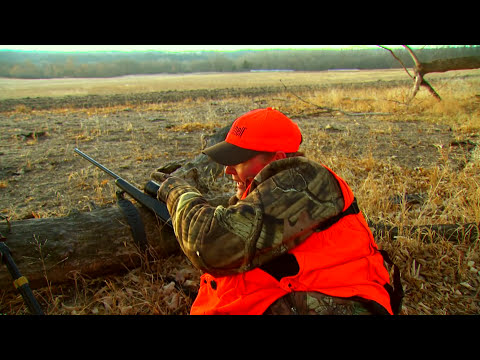 Hunting Whitetail Deer in Nebraska