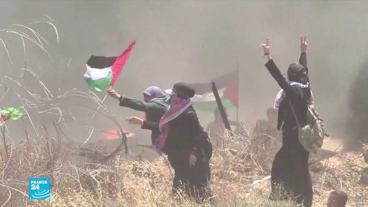 قطاع غزة.. مليوني نسمة وأكثر المناطق كثافة سكانية في العالم  - نشر قبل 2 ساعة