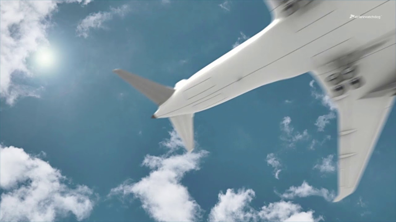 The 2 Cheapest Days of the Week to Fly | Airfarewatchdog Blog