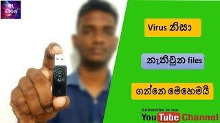 Recover USB drive files hidden by virus