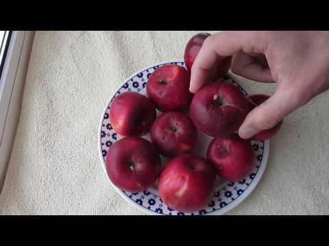 Яблоки Джонатан - один из любимых сортов