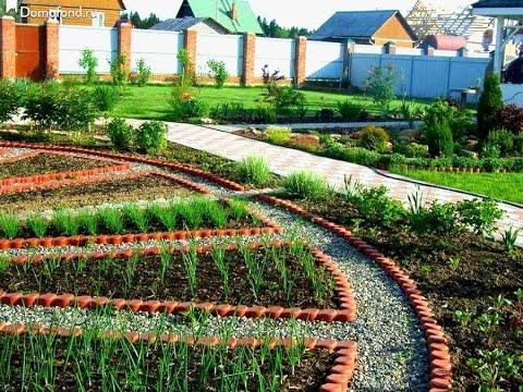 Красивые грядки украсят любой огород