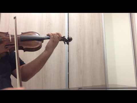 Violino Jacobus Stainer