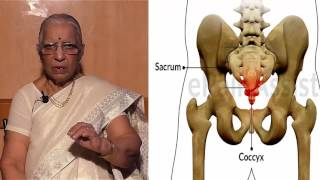 Treat yourself if you have tailbone pain (Coccyx injury) through Acupressure - Dr P.S.Lalitha