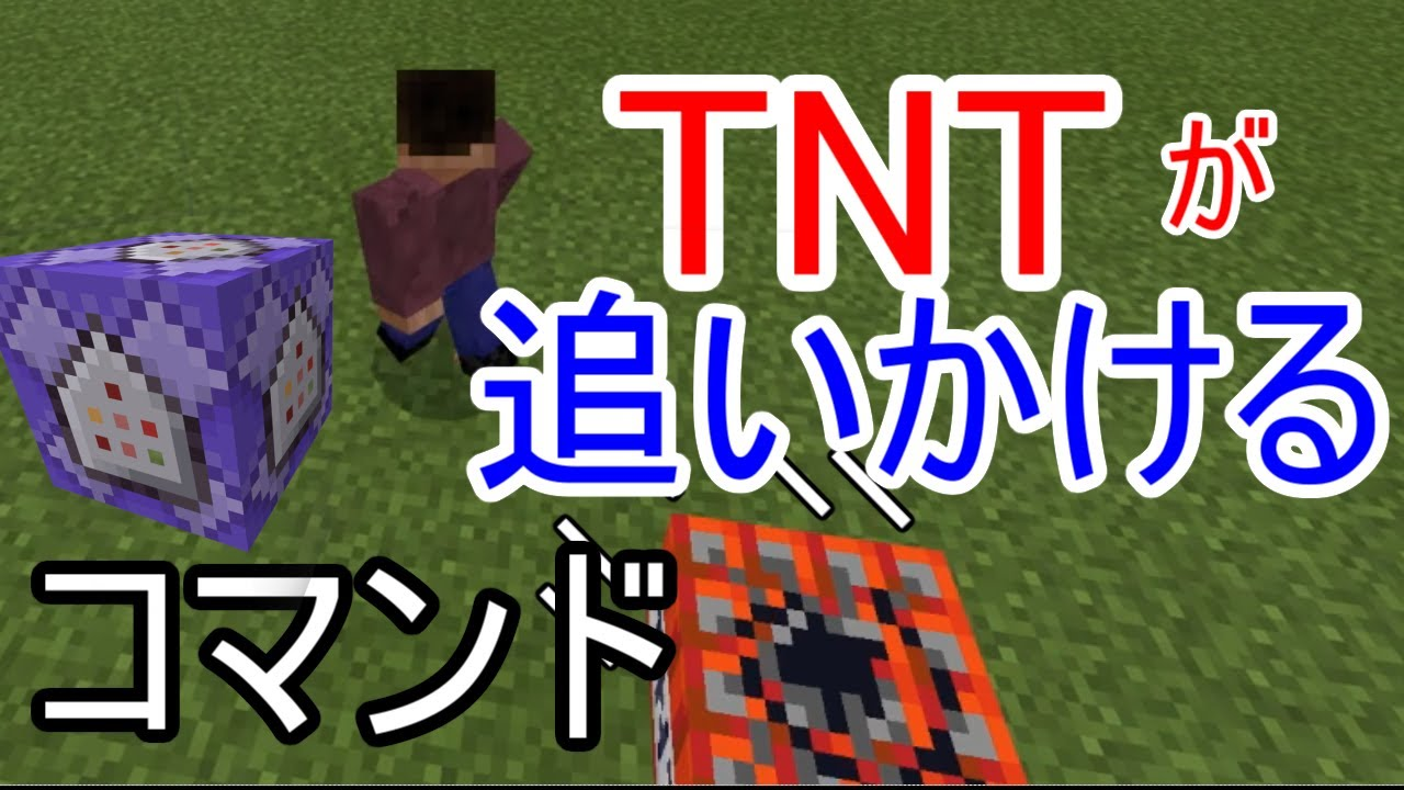 追跡 tnt Track &